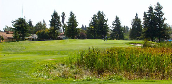 Foxtail North Course